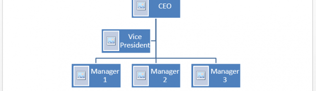 Organogram example microsoft word templates for Organigram template