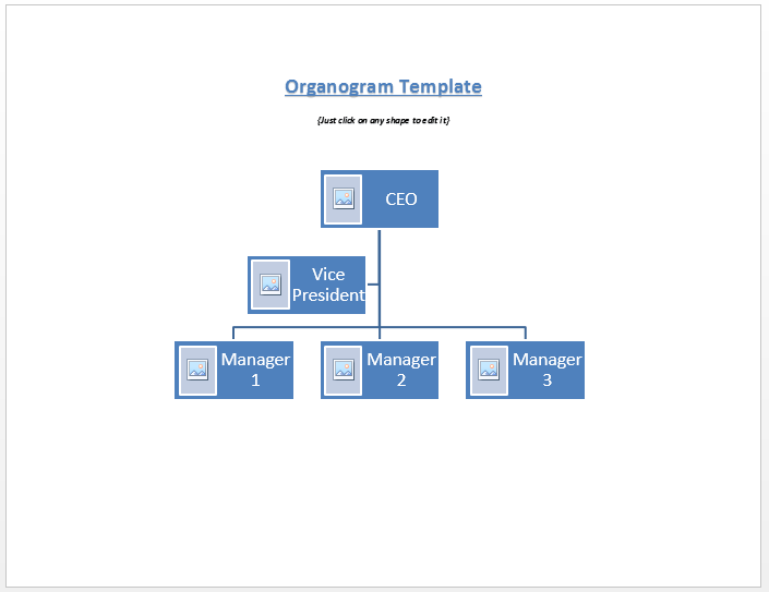 organogram template microsoft word templates