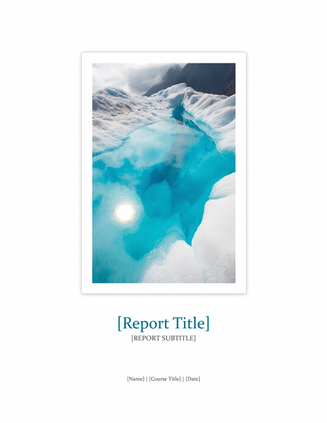 Report Templates – Word Report Template