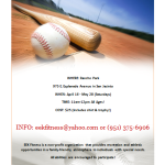 Baseball Flyer Template