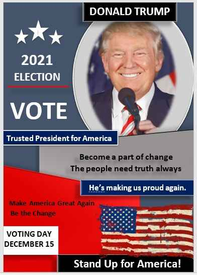 Campaign Poster Template 02