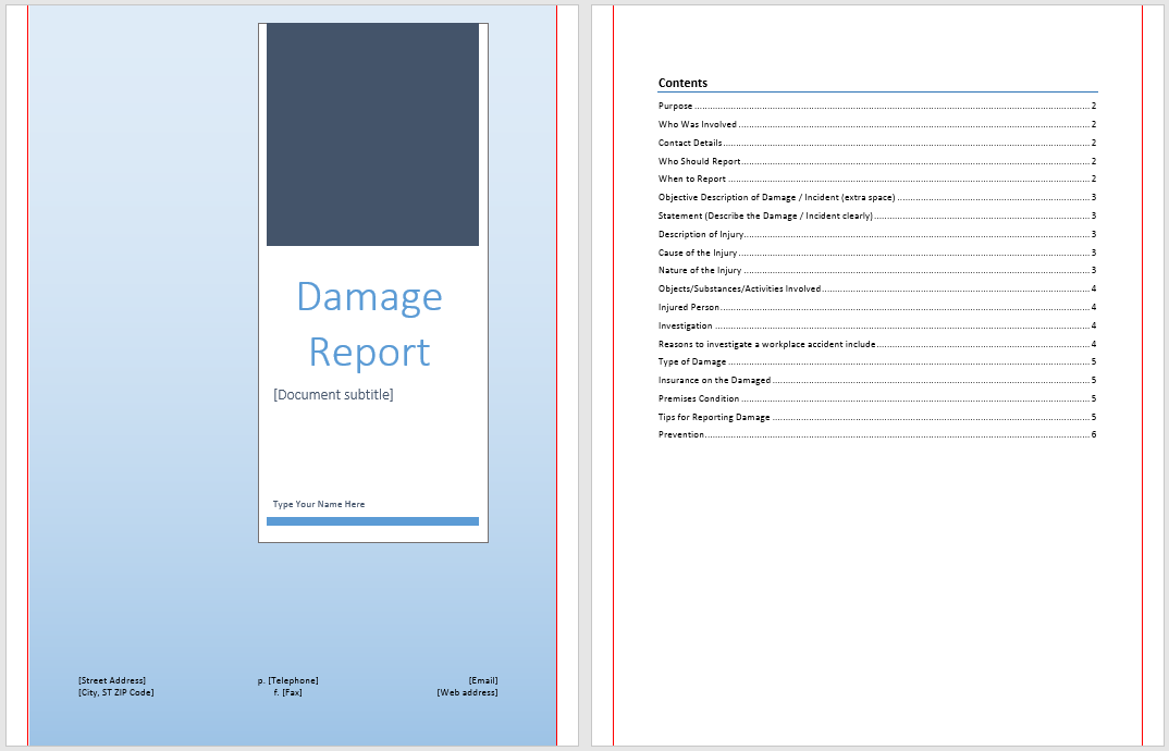 Damage Report Template