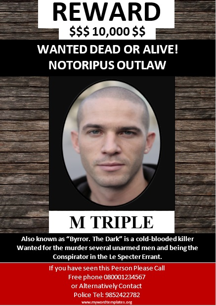 Missing Person Poster Template 08